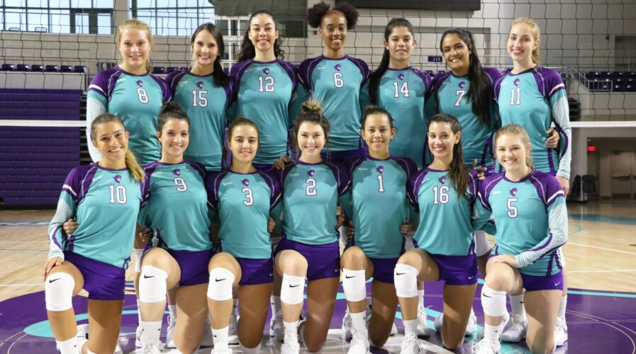 Florida SouthWestern State College Women's Volleyball Team 2019-2020