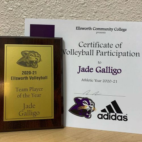 2021 ECC Women's Volleyball team Player of the Year